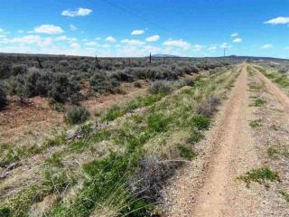 Across From Colorado Road, Tres Piedras NM