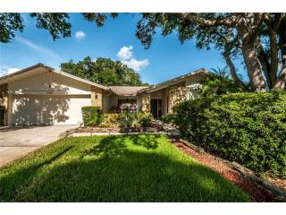 2582 Frisco Drive, Clearwater FL