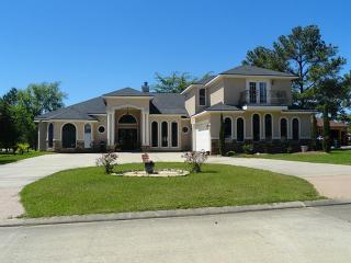 10877 Dauphine Street, Willis TX