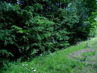 9-10 Jessica Ann Road 9 10, Lincolnton NC