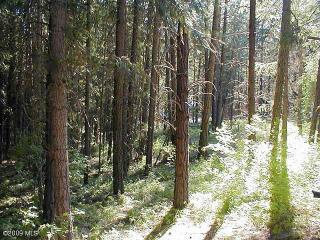 21512 Camp 12 Road, Leavenworth WA