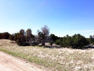 Par 88 Railroad Spring Drive, Pueblo CO