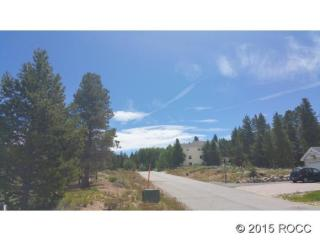 141 143 Brooklyn Circle, Leadville CO