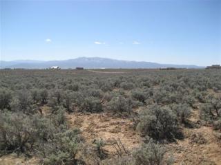 Camino Ovejeros, Taos NM