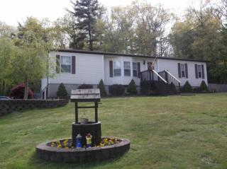 154 Meadow Ridge Acres Road, Dingmans Ferry PA