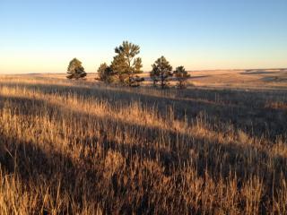 R114237 Wolf Creek Trail, Kiowa CO