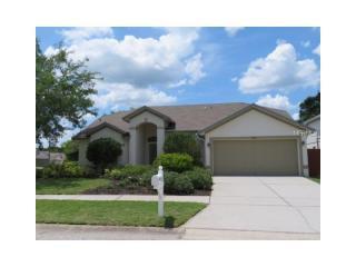 6025 Weatherwood Circle, Wesley Chapel FL
