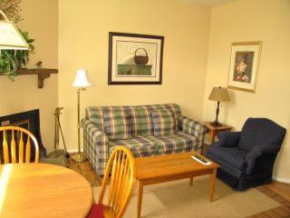 462 Three Ridges Condos, Wintergreen Resort VA