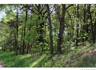 Lot 4 South Shore Drive, Altoona WI