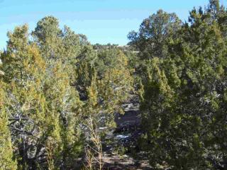 Off State Road 518, Ranchos de Taos NM