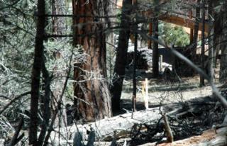 65 Navajo Circle, Angel Fire NM