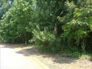 105 Old Mill Road, Chapin SC