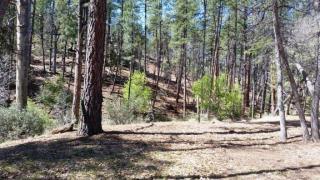 3354 Oak Springs Drive, Pine AZ