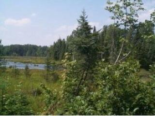 5802 Highway 51 #Lot 16, Mercer WI