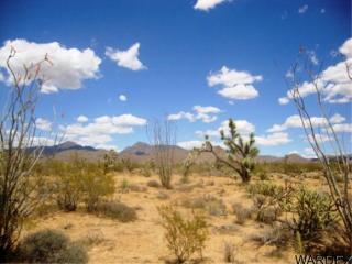 354 Dead Eye Road, Yucca AZ