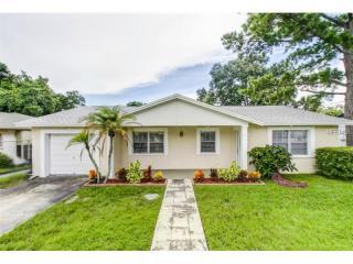 4805 Wynwood Drive, Tampa FL