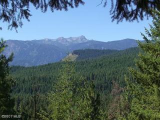 25607 Camp 12 Road, Leavenworth WA