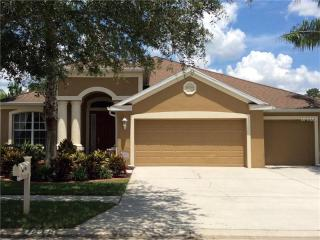 10505 Sky Flower Court, Land O' Lakes FL