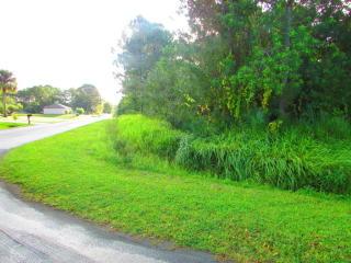 297 Joy Haven Avenue NW, Palm Bay FL