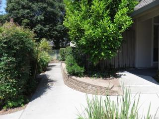 141 Roundtree Boulevard, San Rafael CA