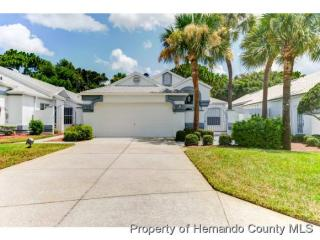 11045 Via Santiago Ct, Spring Hill, FL 34608