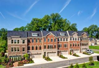 Chestnut Place Towns by NVHomes