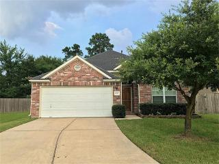 8707 Headstall Drive, Tomball TX