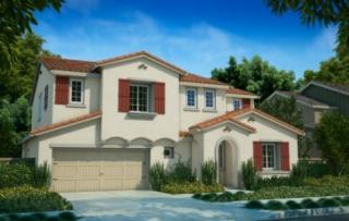 Mataro at Glen Loma Ranch by Brookfield Residential-NorCal