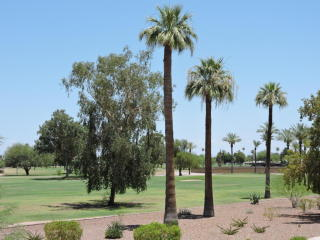 10804 N Fairway Court West, Sun City AZ