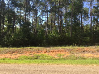 11.92 Ac Walden Road, Thomasville GA