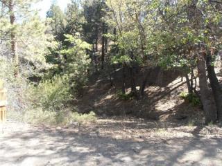 1290 Minton Drive, Big Bear City CA
