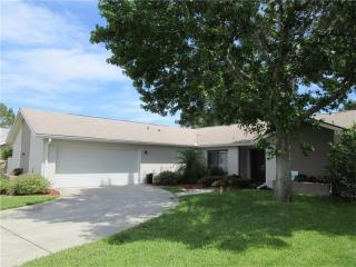 2828 Tangelo Way, Palm Harbor FL