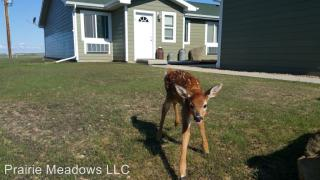 3945 Highway 8, New Town, ND 58763