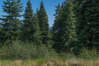 12507 Falcon Point Place, Truckee CA