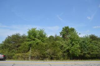 Highway 157, Menlo GA