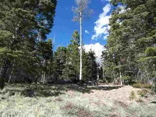 1298 A Pleasant Valley Overlook, Angel Fire NM
