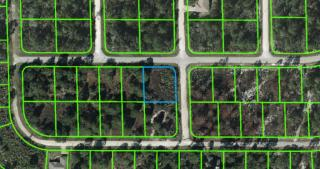 1202 Archie Summers Road, Lake Placid FL