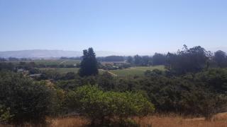 Rancho, Watsonville CA