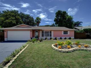 204 Gunn Avenue, Clearwater FL