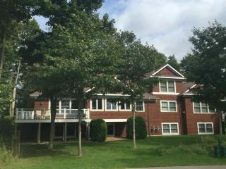 608 Crooked Tree Drive, Petoskey MI