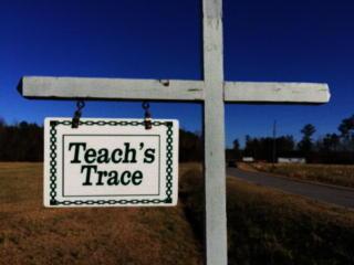 24 25 Teachs Trace Lane, Bath NC