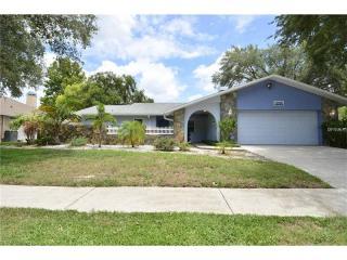2429 Osprey Avenue, Palm Harbor FL