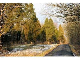 15 Pine Run Lane, Batavia OH