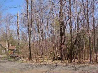 Tba Todd Hill Road, West Kill NY