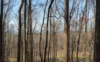 Trailwood Drive-Lt 174, Ellijay GA