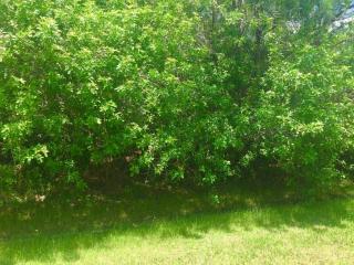 5845 Northwest Zenith Drive, Port Saint Lucie FL