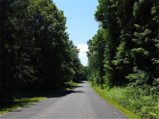 96 Stoddard Road, Morris CT
