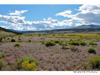 Tbd Cc 36 Road, Saguache CO