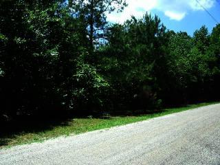 Safford Mill Road, Wildersville TN