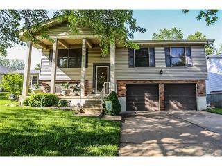 209 Stillbrook Estates Drive, Fenton MO